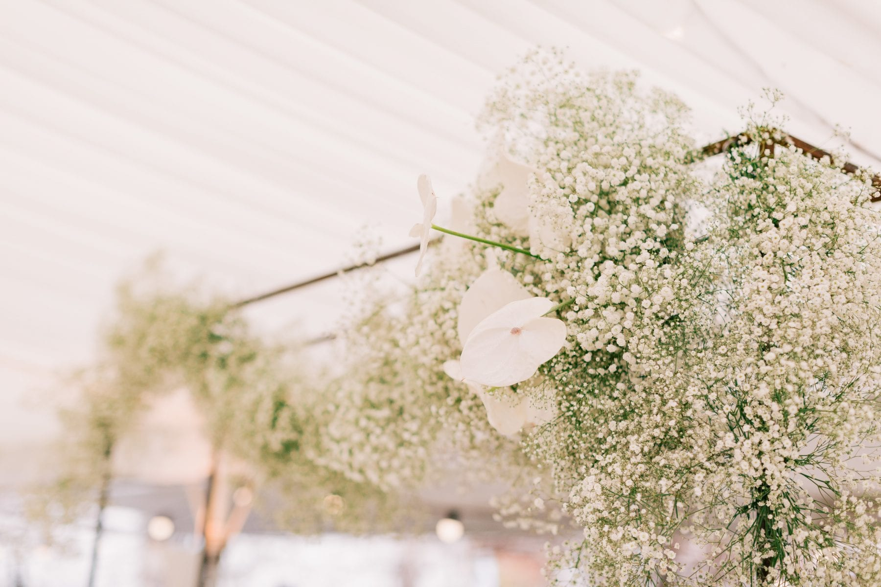On My Hand wedding flowers real wedding - Rueben and Hannah - close up of white ceiling arrangement for reception